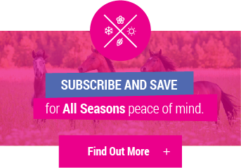 Subscribe and Save - click to find out more