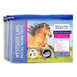 Image of Horse 4Count PLUS Season Pack
