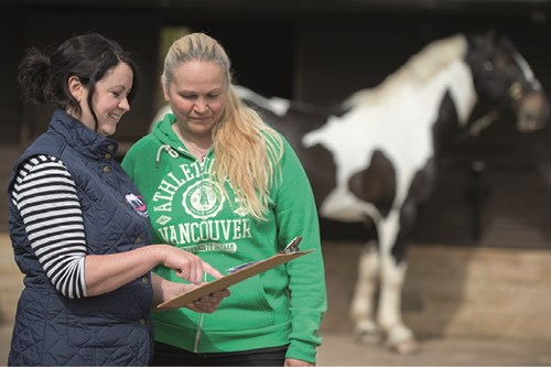 Free Equine Worming Consultations