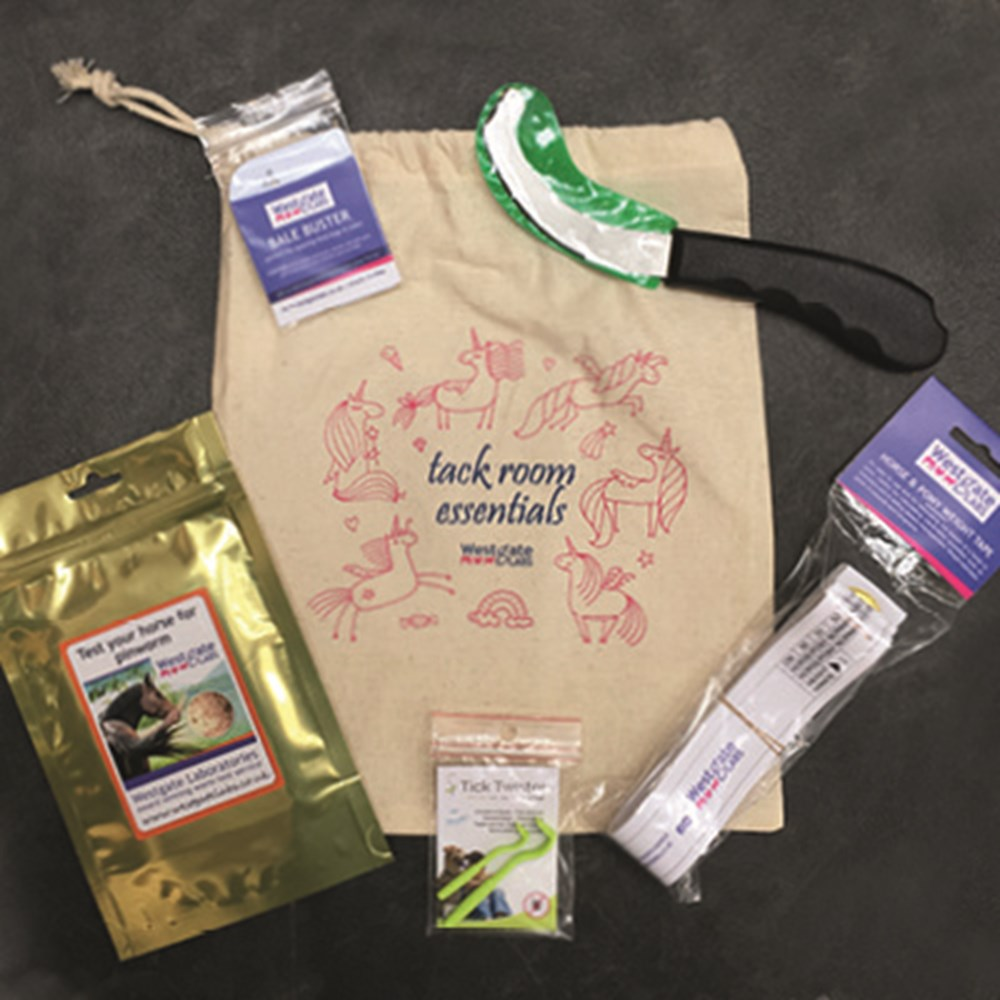Image of Tack Room Essentials Kit