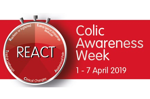 REACT Now to Beat Colic