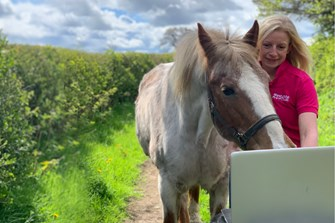 Free interactive training course for horse owners