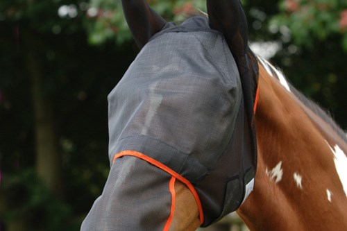 Field Relief Fly Mask