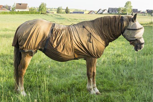 full body fly rugs protect from midges